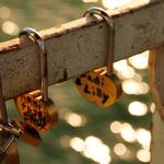 Les canedas de l'amour